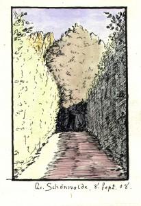 Der Buchengang - 1908