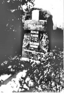 Grabstein in Zoppot