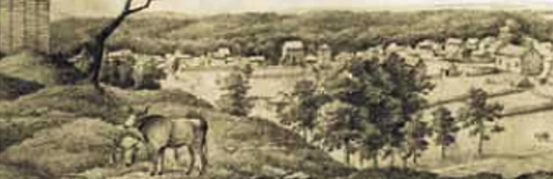 New Braunfels-1848-Ausschnitt