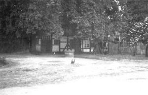 Schule -Schloß Ricklingen