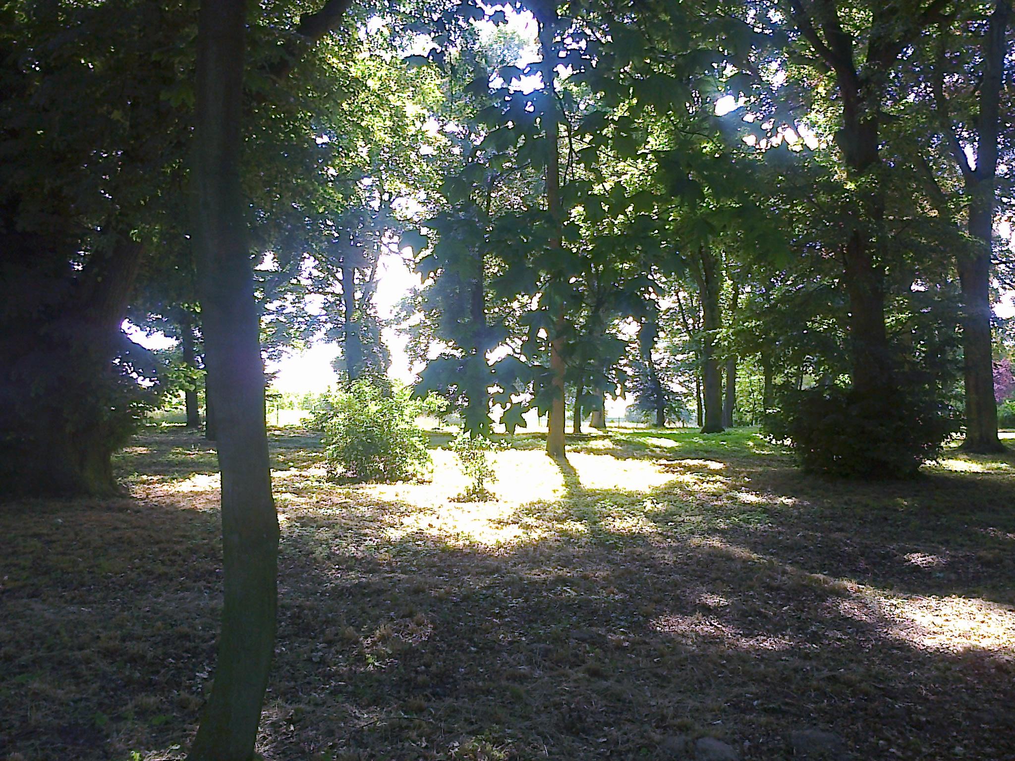 Weidenhof -2014 / 2015